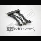 Harness Cableado Ecu Rywire  OBD2A a OBD1 (Honda)